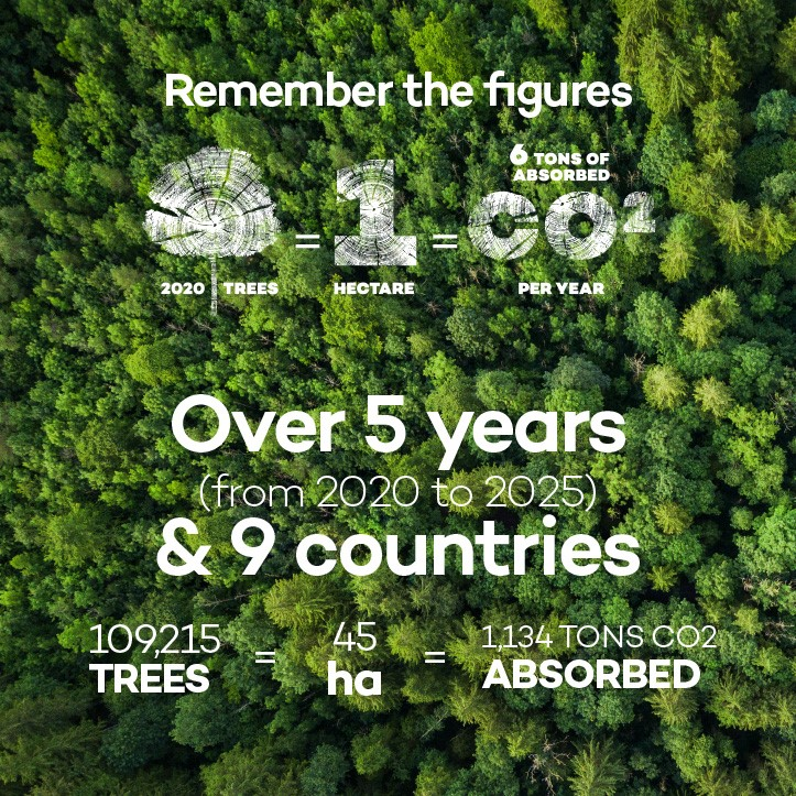 Banner Trees until 2025 pour site corpo